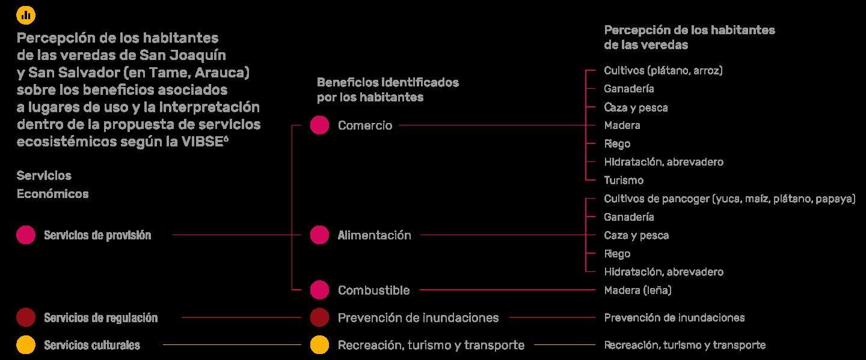 Percepción de los habitantes de las veredas de San Joaquín y San Salvador (en Tame, Arauca) sobre los beneficios asociados a lugares de uso y la interpretación dentro de la propuesta de servicios ecosistémicos según la VIBSE